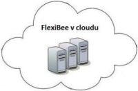 flexibee_small